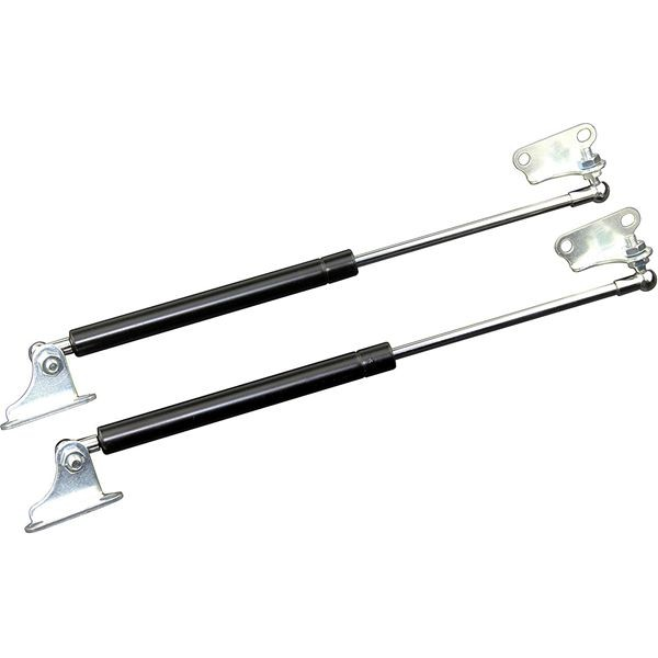Racdde 2pcs 300N/67LB 15inch Gas Spring/Prop/Strut/Shock/Lift Support with L-type Mounts